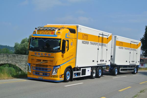 Volvo WG 13 2015 225